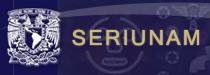 Logotipo do Seriunam com link externo para exibir a página da Revista no indexador